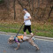 A PACK volunteer takes a dog for a run. Photo: Marleen van den Neste