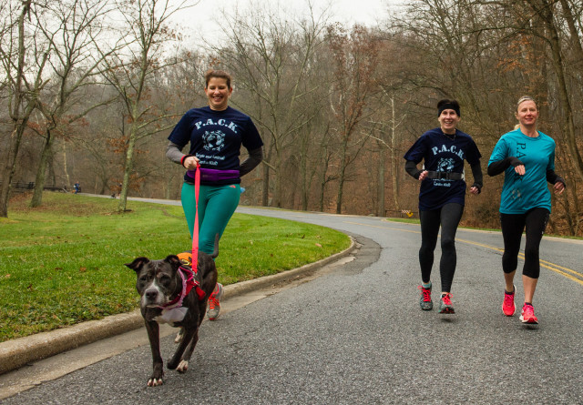 Humane Society Dog Walking 12-12-15-2186
